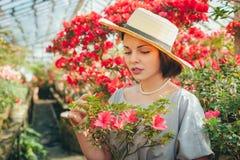 Schönes erwachsenes Mädchen in einem Azaleengewächshaus träumend in einem schönen Retro- Kleid und in einem Hut lizenzfreies stockfoto
