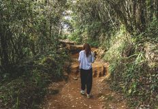 Schönes europäisches Mädchen, das in den tropischen Wald geht stockfotos