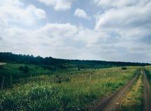 Schönes Feld Stockbilder