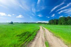Schönes Feld und Straße stockbilder