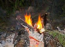 Schönes Feuer Stockfotografie