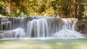 Schönes Flusswasser fällt in tiefen Wald Lizenzfreie Stockbilder