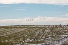 Schönes Frühlingsfeld im Schnee in Weißrussland Stockfotos