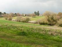 Schönes Frühlingsfeldwiesenbaum-Himmelackerland des äußeren Landes lizenzfreie stockbilder