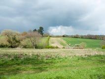 Schönes Frühlingsfeldwiesenbaum-Himmelackerland des äußeren Landes stockfotografie