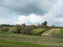 Schönes Frühlingsfeldwiesenbaum-Himmelackerland des äußeren Landes lizenzfreies stockbild