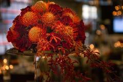 Schönes frisches Blumenfeiertagsmittelstück Lizenzfreie Stockbilder