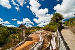 Schönes geothermisches Wai-O-Tapu Lizenzfreies Stockfoto