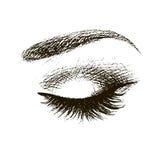Schönes geschlossenes weibliches Auge Stockfoto
