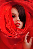 Schönes Gesicht in den roten Roseblumenblättern Lizenzfreies Stockbild