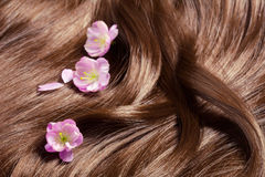 Schönes gesundes glänzendes Haar mit Sakura-Blumen Stockfotos
