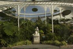 Schönes Gewächshaus in Glasgow Botanic Gardens Stockfotografie