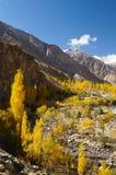 Schönes Ghizer-Tal in Nord-Pakistan lizenzfreie stockbilder