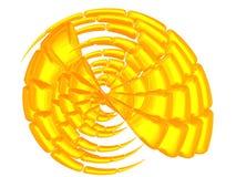Schönes goldenes Shell Lizenzfreies Stockfoto