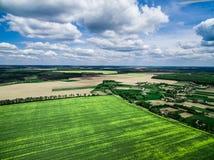 Schönes grünes Feld mit Dorf Stockbilder