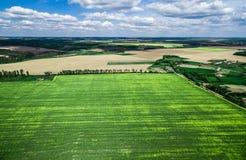 Schönes grünes Feld mit Dorf Lizenzfreie Stockfotografie