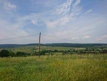 Schönes grünes Feld mit wilden Blumen und schöner ruhiger Himmel Lizenzfreie Stockbilder