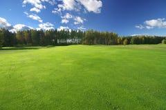 Schönes grünes Feld und Blau Stockbild