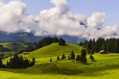 Schönes grünes Gras auf einem Golffeld mit Berg und blauem Himmel Stockfotografie