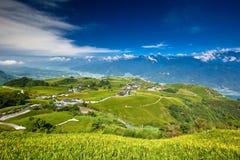 Schönes grünes Gras und Berg Lizenzfreies Stockfoto