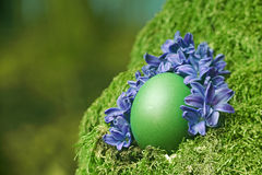 Schönes grünes Osterei Stockfotos