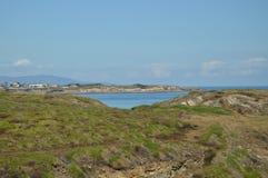 Schönes grünes und purpurrotes Feld mit dem Horizont und kantabrisches Meer im Hintergrund auf dem Strand der Kathedralen in Riba lizenzfreie stockbilder