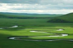 Schönes Grasland Stockbild