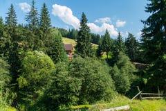 Schönes Häuschen von einem Blockhaus im Schatten von grünen Koniferenbäumen auf dem Bergabhang Ein Platz für Familienrest Stockbilder