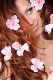 Schönes Haar stockfotos