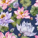 Schönes helles nahtloses mit Blumenmuster Purpurrote und rosa Lotosblumen mit Angebot verlässt auf dunkelblauem Hintergrund stock abbildung