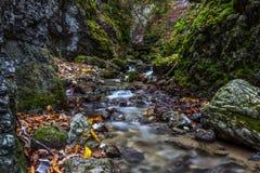 Schönes Herbsttal mit Wasserfällen und grünen Felsen Stockfoto