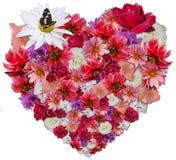Schönes Herz gemacht von den verschiedenen Blumen stockbild