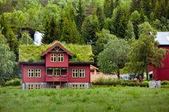 Schönes Holzhaus mit Gras auf dem Dach in Norwegen in der Wolke Stockfotos