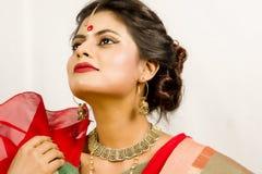 Schönes indisches weibliches Modell im indischen Saree stockfotos