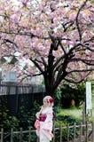 Schönes japanisches Mädchen, das bunten Kimono trägt lizenzfreies stockfoto