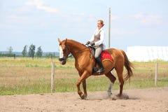 Schönes junges blondes Frauenreitkastaniepferd Stockfotografie