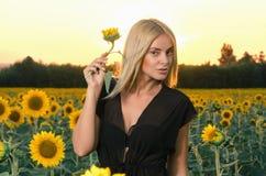 Schönes junges blondes Modell des Porträts im schwarzen Kleid auf einem Feld von Sonnenblumen Stockfoto