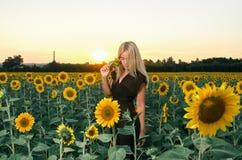Schönes junges blondes Modell im schwarzen Kleid auf einem Feld von Sonnenblumen Lizenzfreie Stockbilder