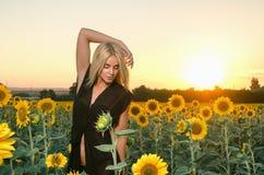 Schönes junges blondes Modell im schwarzen Kleid auf einem Feld von Sonnenblumen Stockfoto