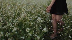Schönes junges brunette Mädchen im schwarzen Rock gehend auf das Feld Ansicht von der R?ckseite Dreht seine Schulter und Blicke u stock video