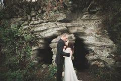 Schönes junges Hochzeitspaar ist, lächelnd küssend und im Park lizenzfreie stockfotos