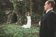 Schönes junges Hochzeitspaar ist, lächelnd küssend und im Park stockbilder
