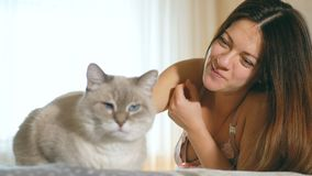 Schönes junges Mädchen, das eine Katze streichelt Blauäugige Katze mit einer rosa Nase Eine Frau und eine Katze liegen auf dem Be stock footage