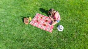 Schönes junges Mädchen, das sich draußen auf Gras, Sommerpicknick im Park habend, Vogelperspektive von oben entspannt lizenzfreies stockbild
