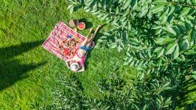 Schönes junges Mädchen, das sich draußen auf Gras, Sommerpicknick im Park habend, Vogelperspektive von oben entspannt stockfotografie