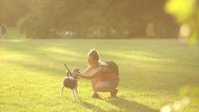 Schönes junges Mädchen in einem T-Shirt, in den kurzen Hosen und in den Gläsern, wenn ein Rucksack mit ihrem Hund spielt, sie str stock footage