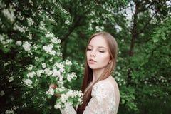 Schönes junges Mädchen in einer blühenden Flieder Lizenzfreie Stockbilder