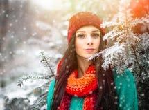 Schönes junges Mädchen genießen im Winterpark Stockbild