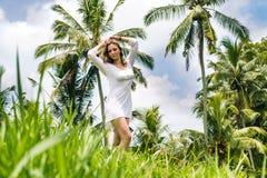 Schönes junges Mädchen mit sexy Körper, den langen dünnen Beinen und dem braunen Haar im Kittel wirft tadellos auf dem Reisfeld,  stockbild