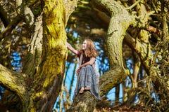 Schönes junges romantisches Mädchen, das in Presidio-Park in San Francisco sitzt stockfoto